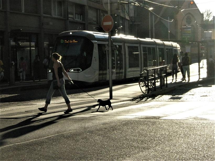 Straßburg Straßenbahn in KFZ freiem Streckenabschnitt klein.jpg