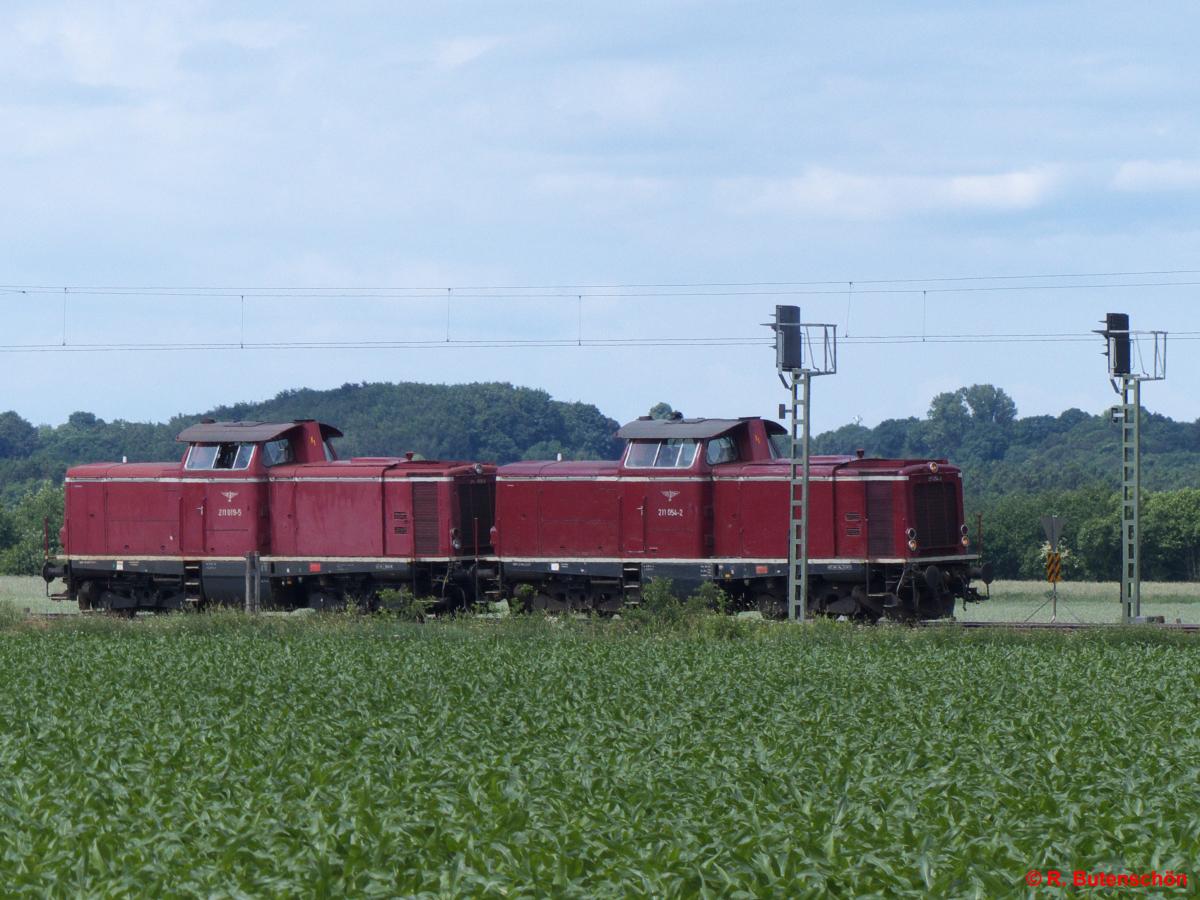 Q1-Quarnstedt-2016-06-11-003.jpg