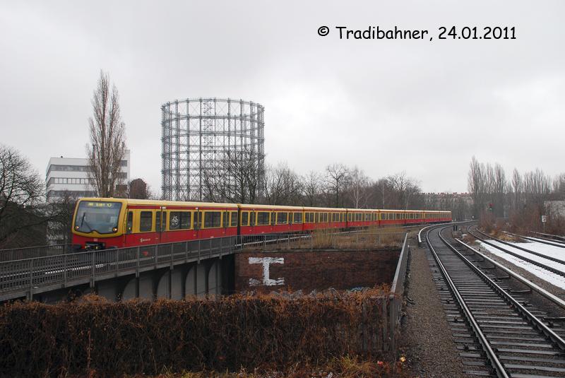 20110124-03F.jpg