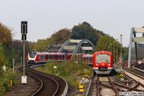 490502474099-ohlsdorf.jpg