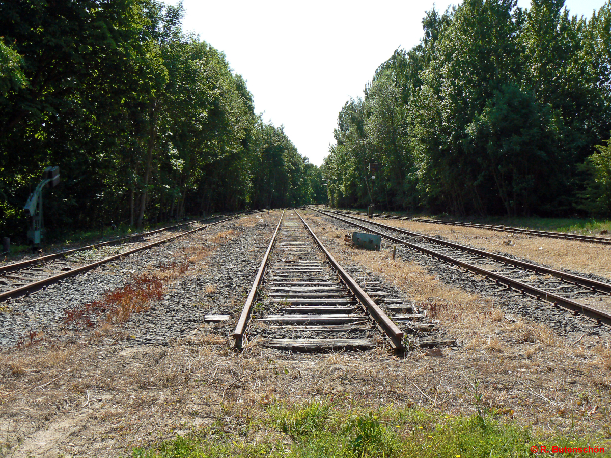 L3-Luetjenburg-2011-06-05-001.jpg