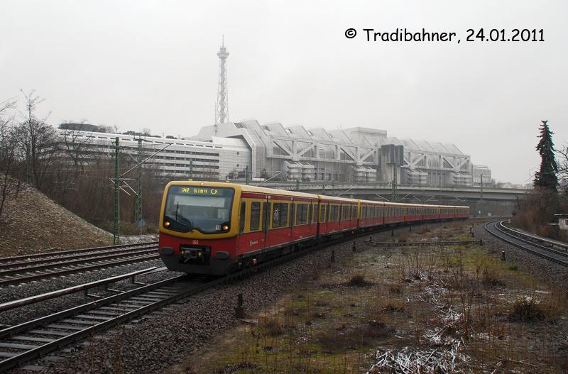 20110124-02F.jpg