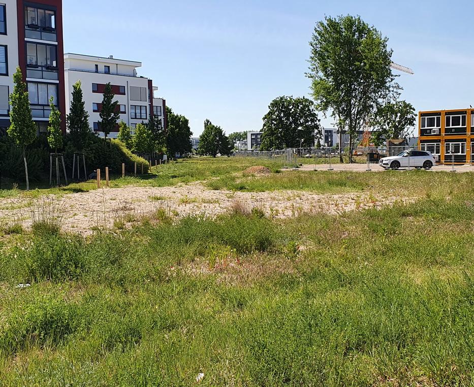 trasse  Adlershof.jpg