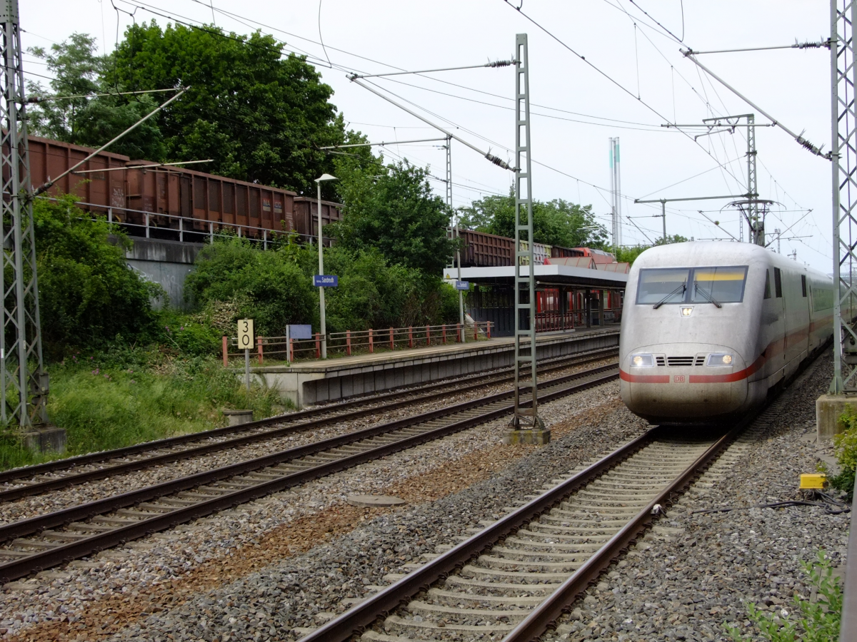 20190614_GZV_Sandreuth__0088.JPG