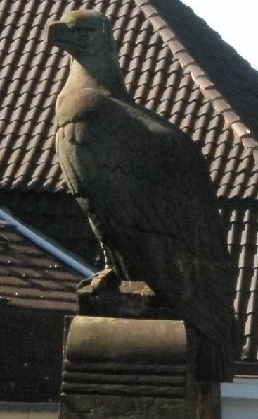 Rätselthread-Adler.jpg