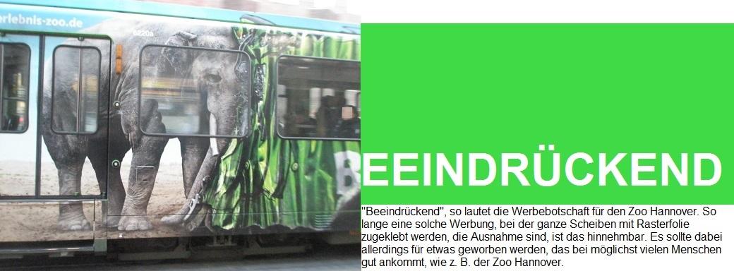 201512 BEEINDRÜCKEND Stadtbahnwerbezug für ZOO Hannover.jpg