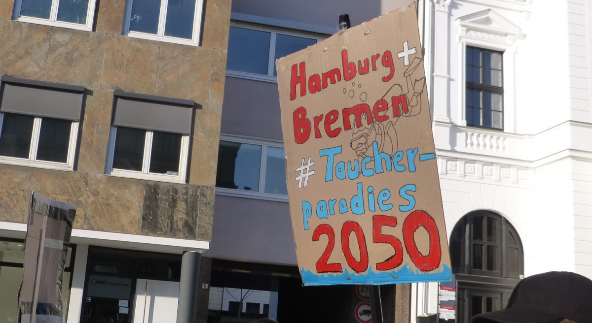 Fridays for Future 20200117 Hamburg und Bremen Taucherparadies.jpg
